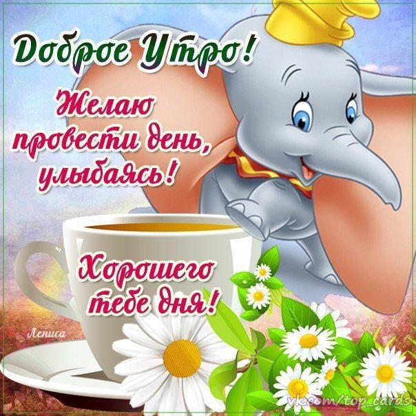 Позитивные картинки с пожеланиями доброго утра и удачного дня