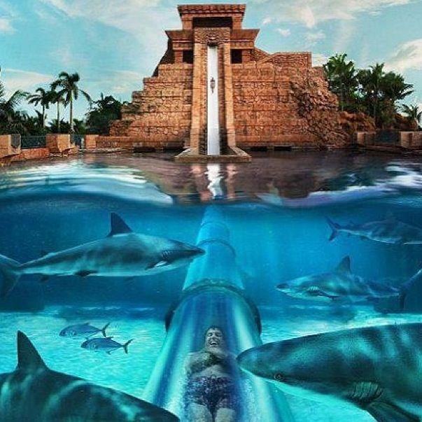 Mayan Temple Water Slide in Atlantis Bahamas