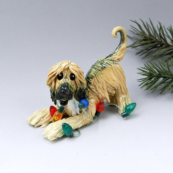 1000 Images About Afghan Hound Art On Pinterest Toys