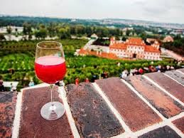 Wine festival in Botanical garden, Prague