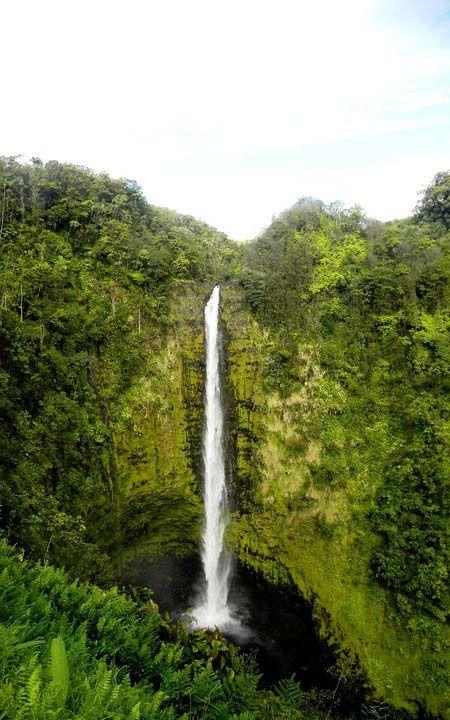 Akaka Falls State Park Hawaii Big Island