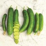 Beit Alpha Cucumber Seed