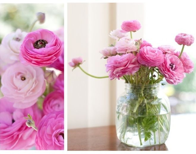 The 25+ best Ranunculus centerpiece ideas on Pinterest | Wedding ...