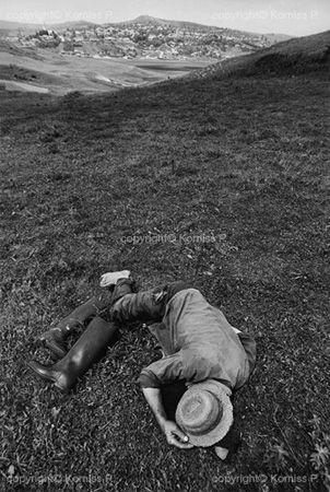 Weary shepherd (1971)