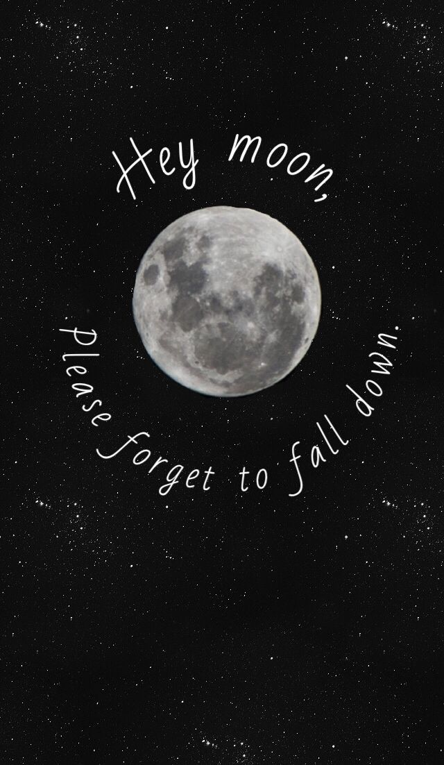 Northern Downpour- Panic! At The Disco  iPhone 5 Wallpaper