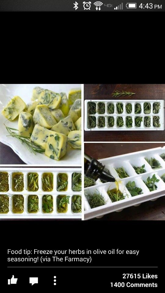 Olive oil herb cubes
