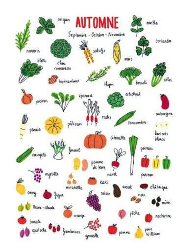Fruits et legumes d' automne