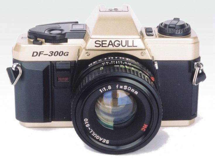 Seagull DF-300G