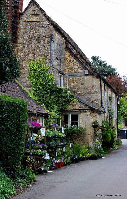 Little flower shop ...  #Lacock #Wiltshire #cottages | Flickr - Photo Sharing!