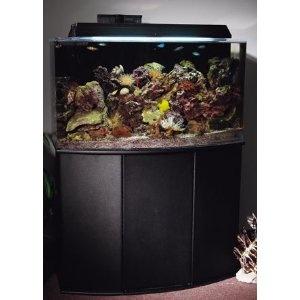 39 best images about aquarium stands on pinterest 55 for 37 gallon fish tank