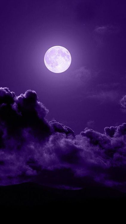 Best Tyrian Purple Images On Pinterest All Things Purple