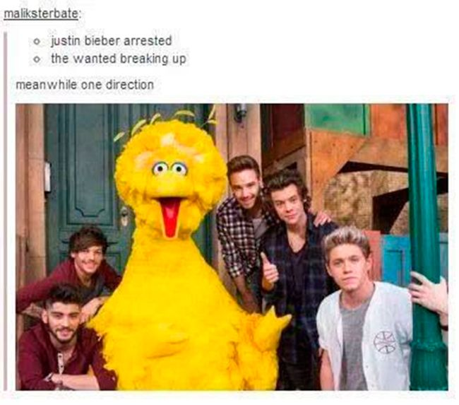 Important One Direction news: 35 inside jokes that only a Directioner would get