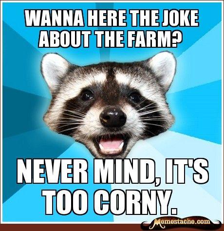 lame adult jokes