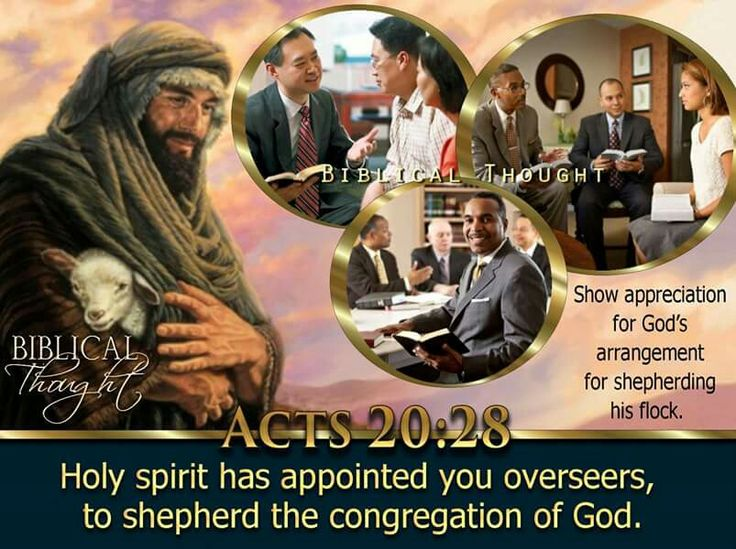 Wednesday, August 10 Holy spirit has appointed you overseers, to shepherd the congregation of God.—Acts 20:28. http://wol.jw.org/en/wol/h/r1/lp-e