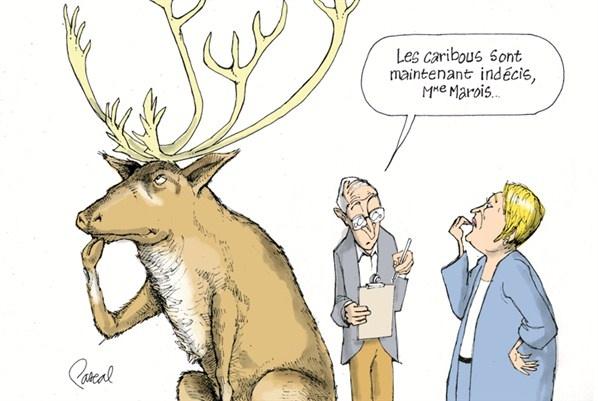 La caricature du jour - Jeudi 23 août (© Pascal Elie)