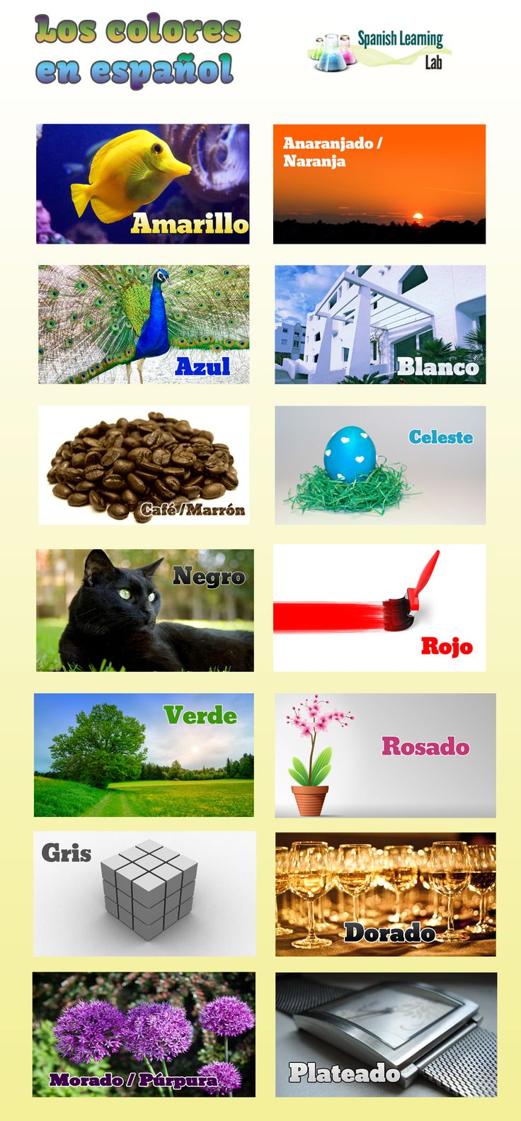 95 best colores images on pinterest spanish lessons teaching colors in spanish learn 12 colores en espaol with nice pictures of real things robcynllc Image collections