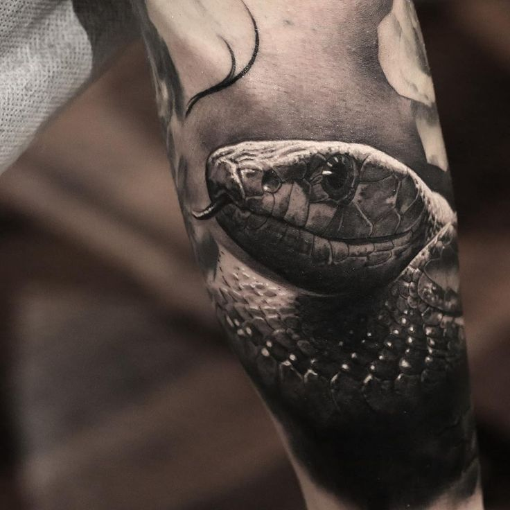 Meaning Of Snake Tattoos: 165 Best Snake Tattoos Images On Pinterest
