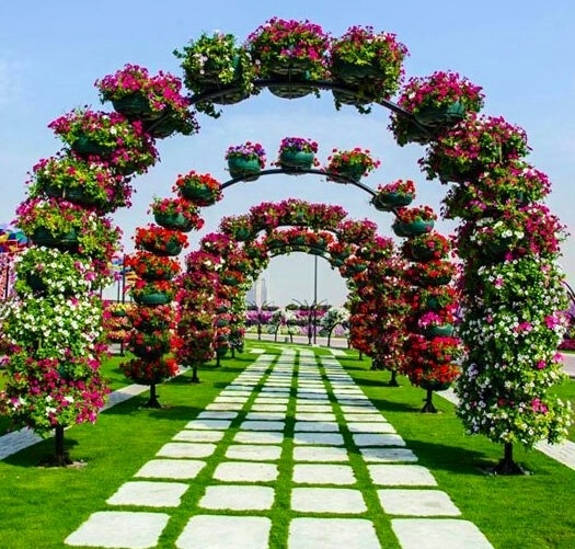 1000 Images About Garden Arches On Pinterest Gardens