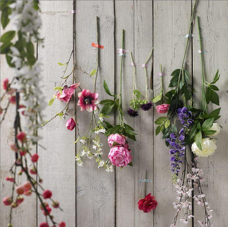 uitgebreid bloemen assortiment Pronto Wonen