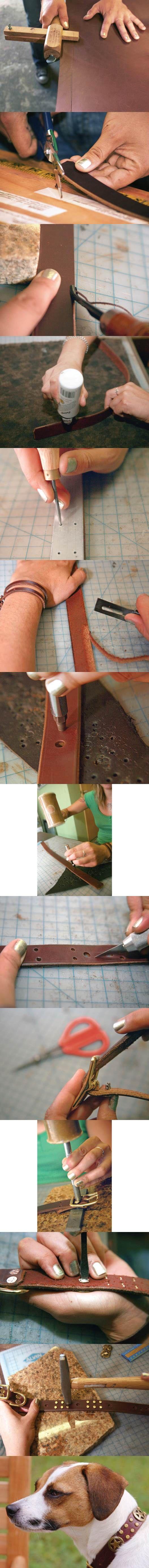 DIY Stylish Leather Dog Collar  step by step