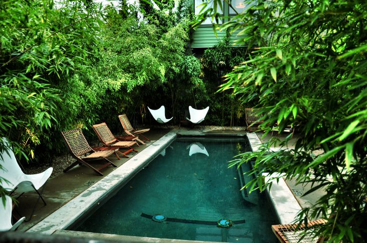 Pool with Greenery
