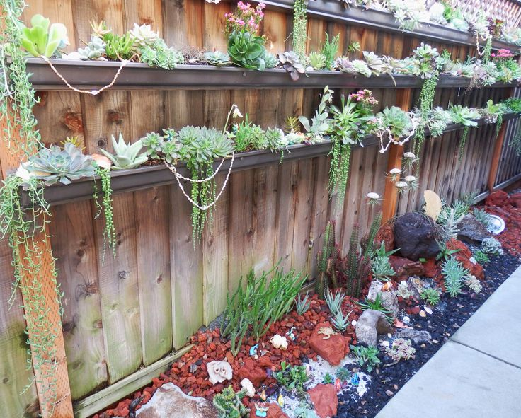 Designs For Gardens 252 best gardens with succulents images on pinterest | landscaping
