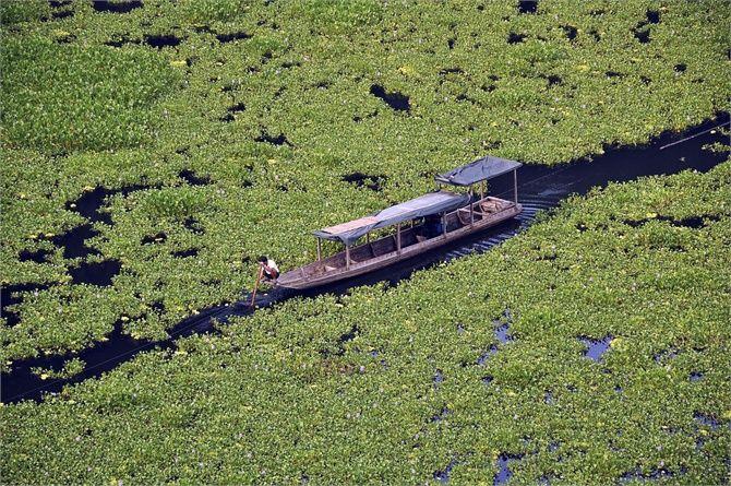 Fiume verde - Un pescatore circondato dalle alghe di un fiume nella contea di Jinping, provincia cinese di Guizhou. (Reuters/Contrasto)