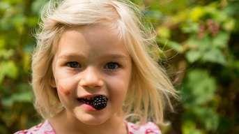 Starostlivosť o drobné ovocie: Viete, čo treba urobiť teraz a čo až na jar?