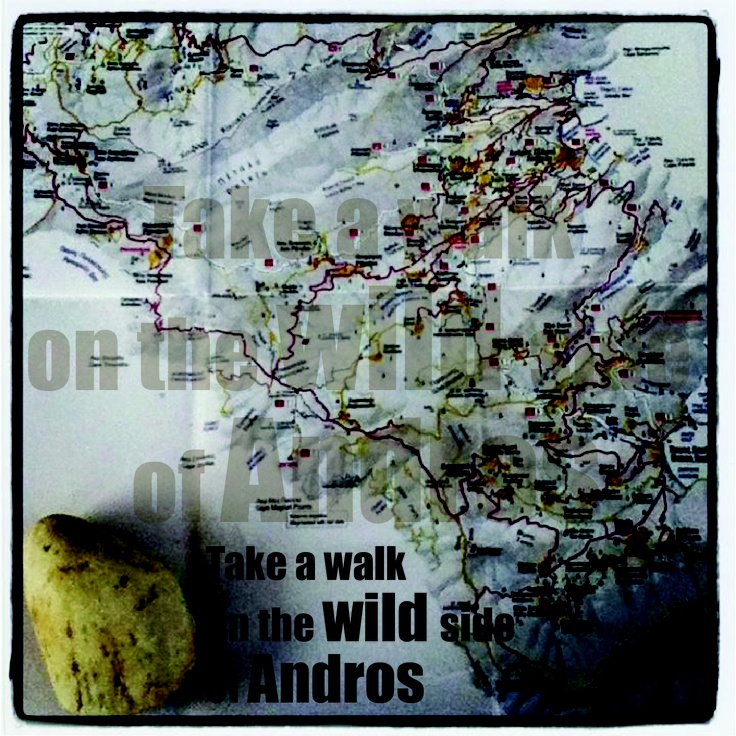 take a walk on the wild side of Andros!