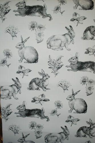 Wallpaper; adorable.