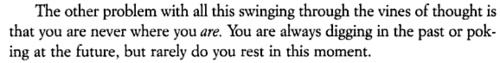 Elizabeth Gilbert, Eat, Pray, Love