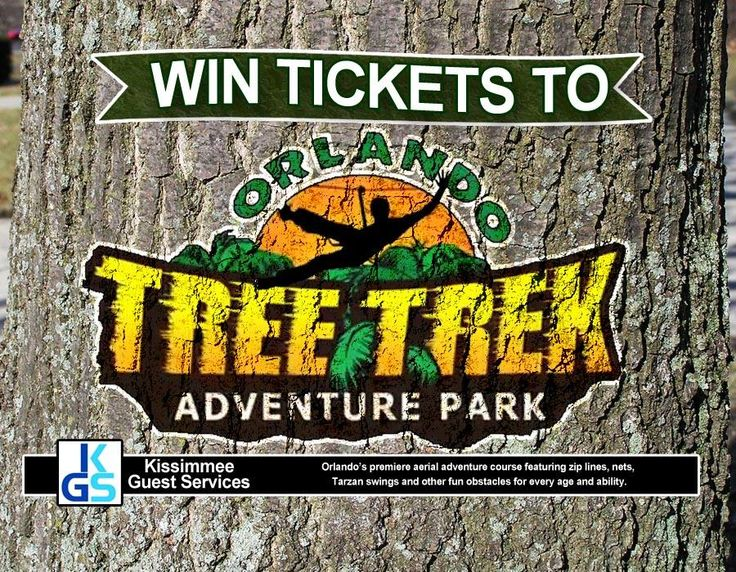 Kissimmee Guest Services:  Win Tickets to Orlando Tree Trek!!