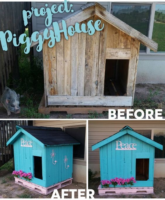 31 Best Outdoor Fencing For Mini Pigs Images On Pinterest