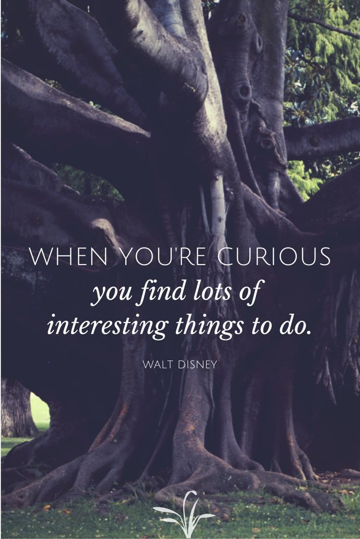 When you're curious, you find lots of interesting things to do. Walt Disney quote