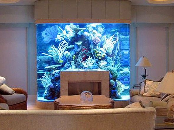 think you have no room for a large aquarium or fish tank these creative designs and installs will make you think again from fireplaces to kitchen islands