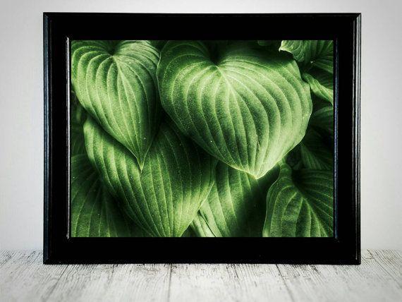 Groene blad afdrukken kunst aan de muur Plant door CristylClear