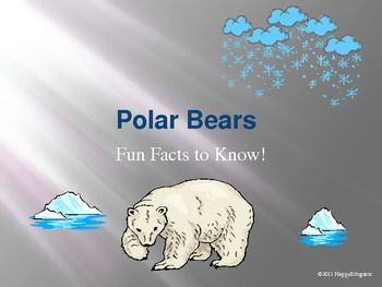 Polar Bears - Fun Facts and Activities PowerPoint