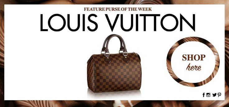 LOUIS VUITTON DAMIER EBENE SPEEDY 25 SATCHEL