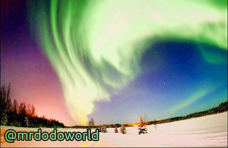 #auroraborealis #aurora #northern #lights #northpole, #auroraaustralis #suedlicht #electricmeteor #light #phenomenon #solarwind #earth #atmosphere #green #magnetosphere #electrons #ionization #space #photography #art #colourful