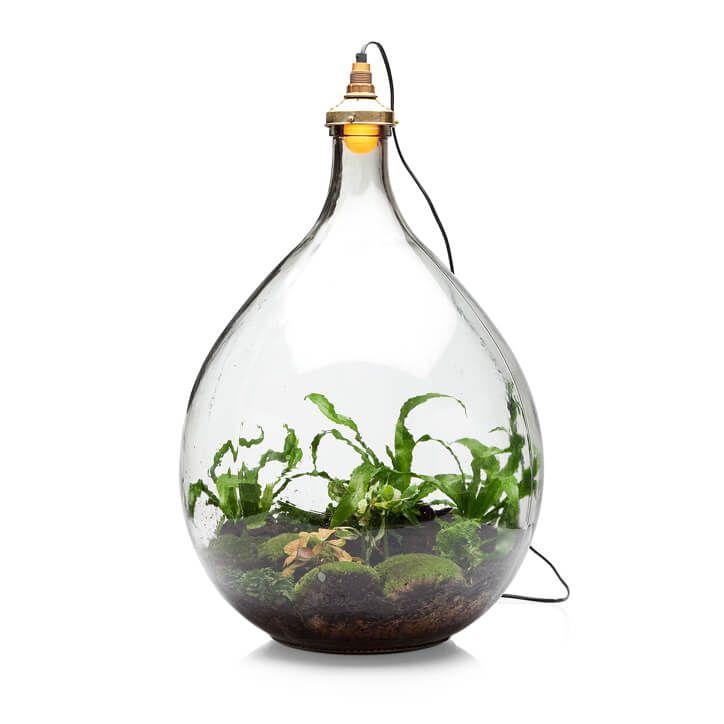 """Een mini ecosysteem in een lamp? Ja dat bestaat! In Utrecht vond ik deze lampen van ontwerper """"Spruitje"""" Jonael van der Sloot: de """"Pickles"""" en de """"Big brother""""."""