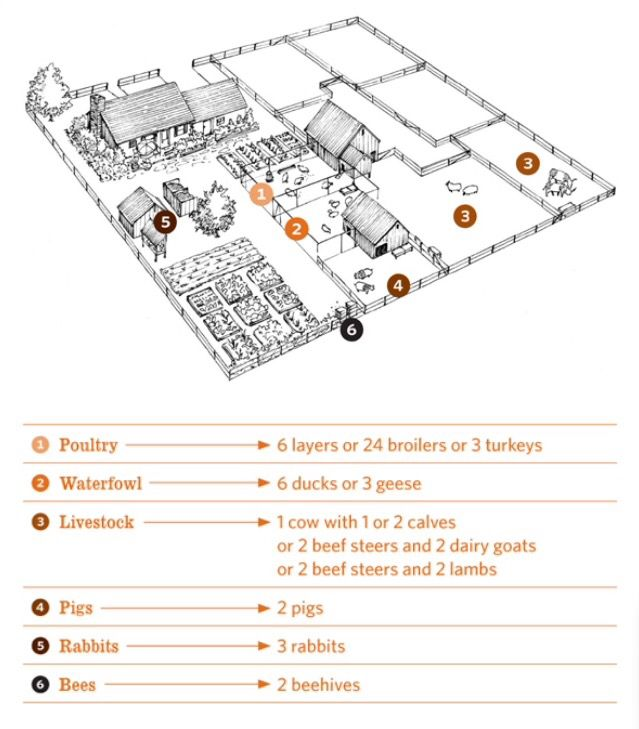 Best 25 farm layout ideas on pinterest barn layout for 1 acre farm layout