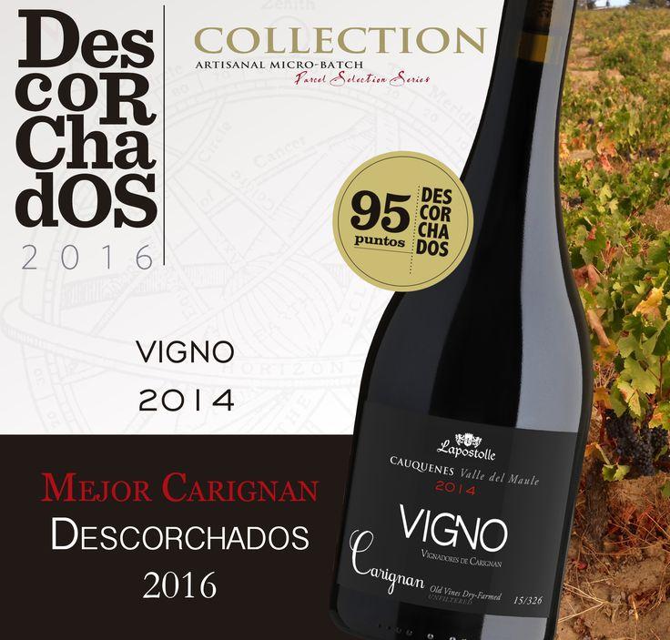 VIGNO 2014 the Best Carignan of Descorchados 2016!!