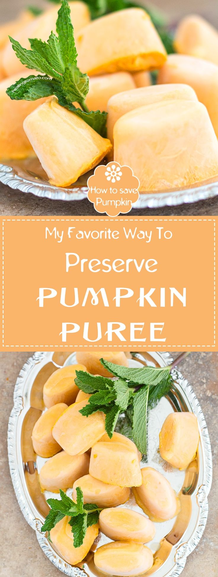 What do you do With all the Extra Pumpkin Puree that you Don't Use? Whether its Puree From a Can or Puree From Fresh Pumpkins, You Can Preserve it Using Five Very Easy Steps | DIY, How to ideas, How to preserve recipes, pumpkin recipes