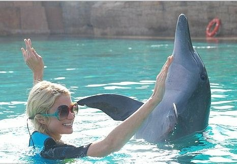 We offer Swimming with Dolphins all year round at #dubairanchvillas ..the Magic goes on,,Enjoy,,,
