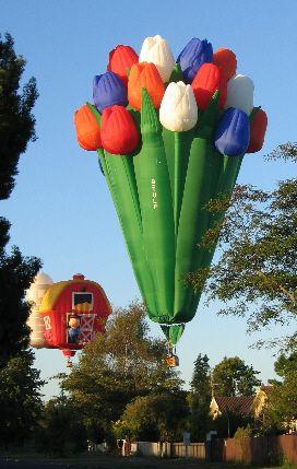 Cool hot air balloons!