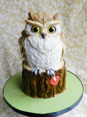 """Amazing """"Owl Be There For You"""" cake  