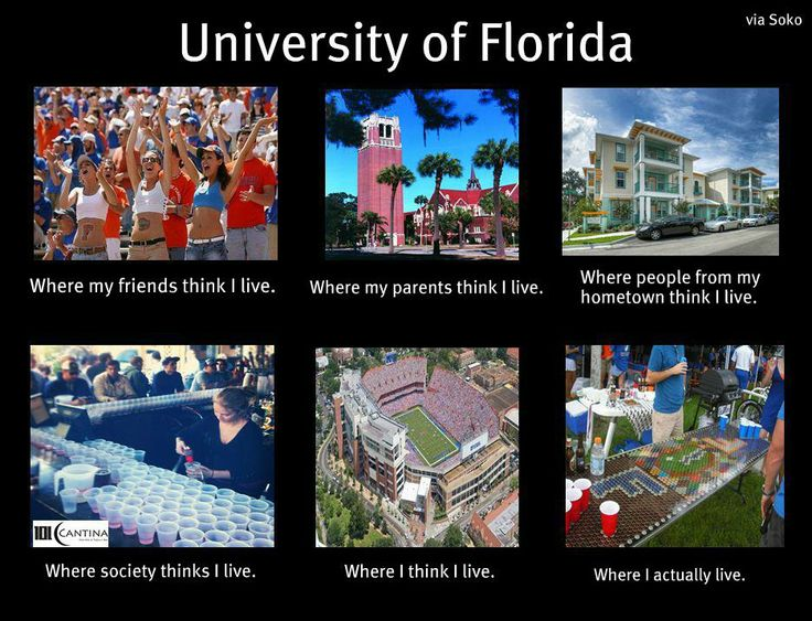Florida Gators Meme
