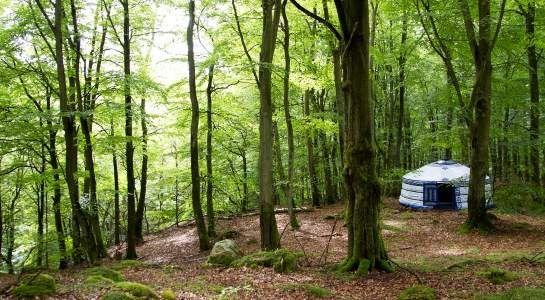 STF - STF Vandrarhem Nyrup/Naturhotell - Boka hotell & vandrarhem online