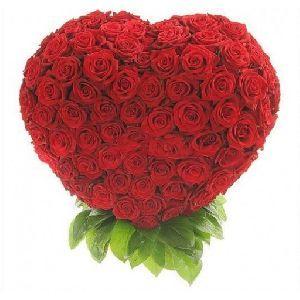 Купить 101 розу - Цветы - Доска обьявлений | Купить подарки, Интернет-магазин…