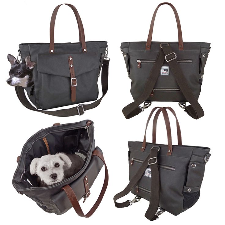 Dog / Pet Carrier Tote Bag by MICRO POOCH™ - Dog Purse, Dog Bag Carrier, Chihuahua, チワワ ドッグキャリー, сумка для собак.